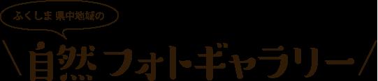 ふくしま県中地域の自然フォトギャラリー