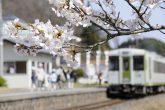 【磐越東線の春】